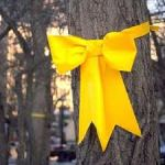 17-4 Tie a Yellow Ribbon