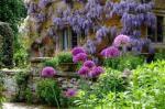 27-8 English garden