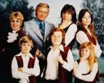 25-9 Partridge family image