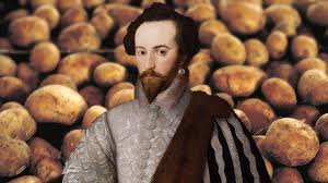 This image has an empty alt attribute; its file name is 29-10-sir-walter-raleigh-potato.jpg